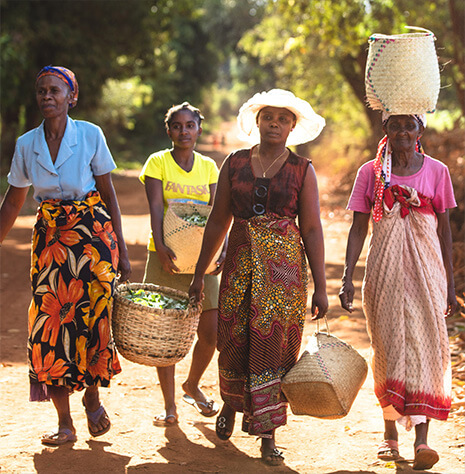 Photo of women carrying baskets
