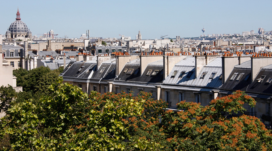 The Green Roofs of Paris