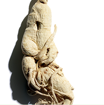Ginseng ingredient